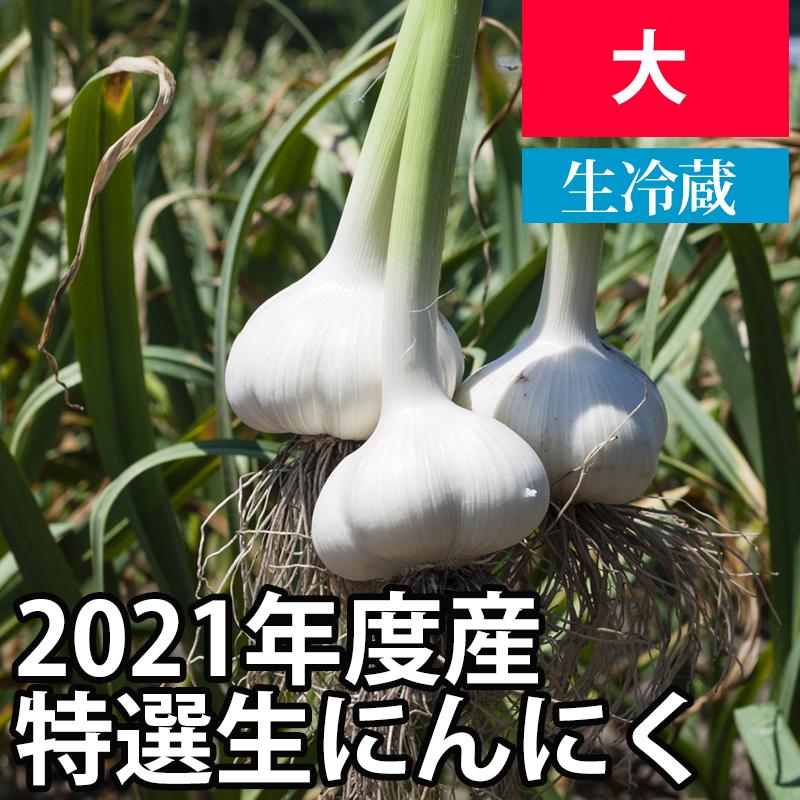 2021年産特選生にんにく(新にんにく) 【大サイズ】【予約商品・数量限定】